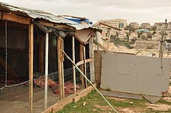 Khaled and Hajar's home in Abu Nuwwar