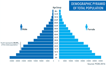 Chart: Demographic pyramid of total population