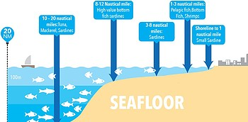 Infographic: Type of fish catch by sea depth and distance from the coast
