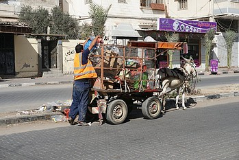 Municipal worker using donkey cart for rubbish collection in Gaza, October 2016.