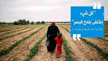إمرأة في أرضها المزروعة بازلاء في شوكة الصوفي، قطاع غزة. تصوير: وسام سمير محمود نصار لوكالة التعاون الفني والتنمية في الأرض الفلسطينية المحتلة، أيلول\سبتمبر 2017.
