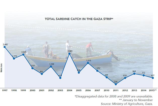 Chart: Total sardine catch in the Gaza Strip