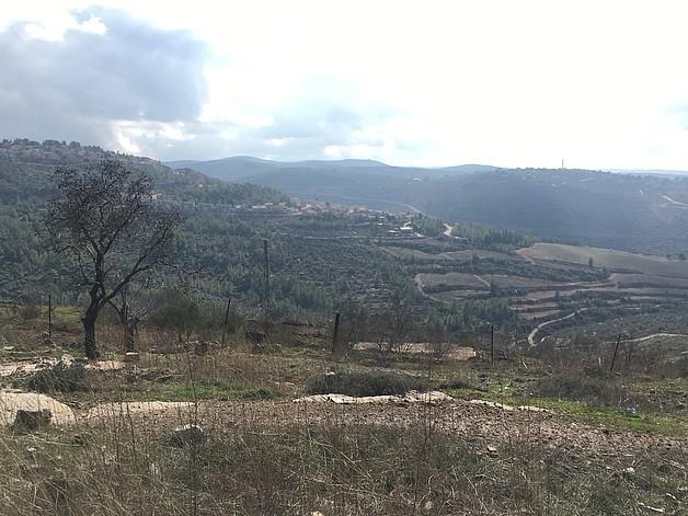 مستوطنة دوليف والمنطقة المزروعة حولها، كانون الأول/ديسمبر 2016. تصوير مكتب تنسيق الشؤون الإنسانية