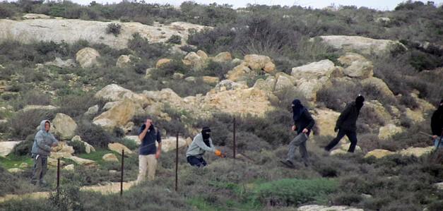 Israeli settler attack in Turmusayya village (Ramallah), January 2015. © Photo by OCHA