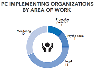 Chart: Protection Cluster implementing organizations by area of work
