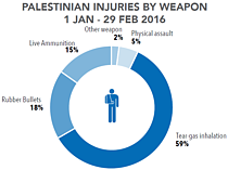 Chart: Palestinian injuries by weapon | 1 January - 29 February 2016