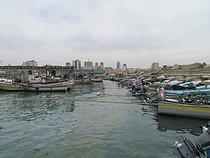 Gaza, 2013