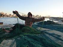 Palestinian boy handling a fishing net in Gaza harbour, December 2015. Photo by OCHA