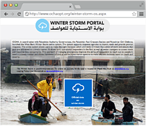 Screenshot: Winter Storm Online System